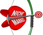 4 Tips for Choosing the Right Niche for You